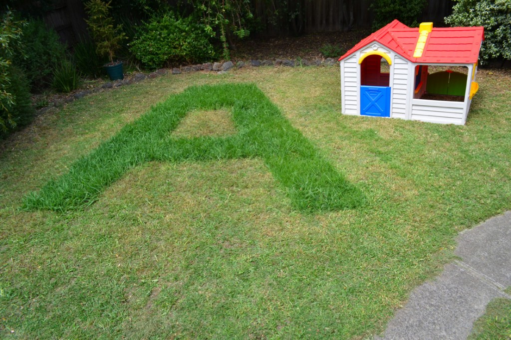 Real life lawn art brought to you by the letter A.
